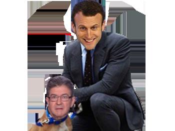 Sticker politic macron melenchon chien toutou soumis insoumis gauchiste gauchiasse