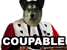 Sticker risitas chien deter coupable juge