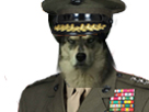 Sticker risitas chien deter general soldat