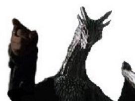 Sticker drogon got dragon