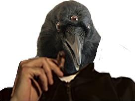 Sticker other corbeau got et toi