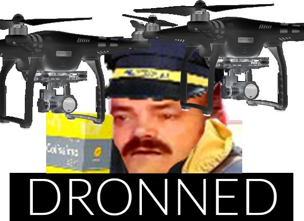Sticker other dronned facteur drone la poste ups amazon fedex dhl
