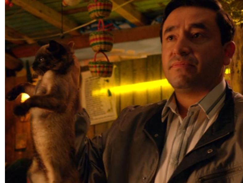 Sticker other narcos suarez dea cat chat
