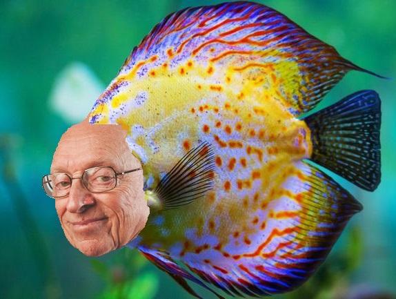 Sticker risitas poisson discus chance larry