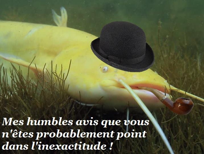 Sticker risitas silure gentleman pipe vrai faux poisson