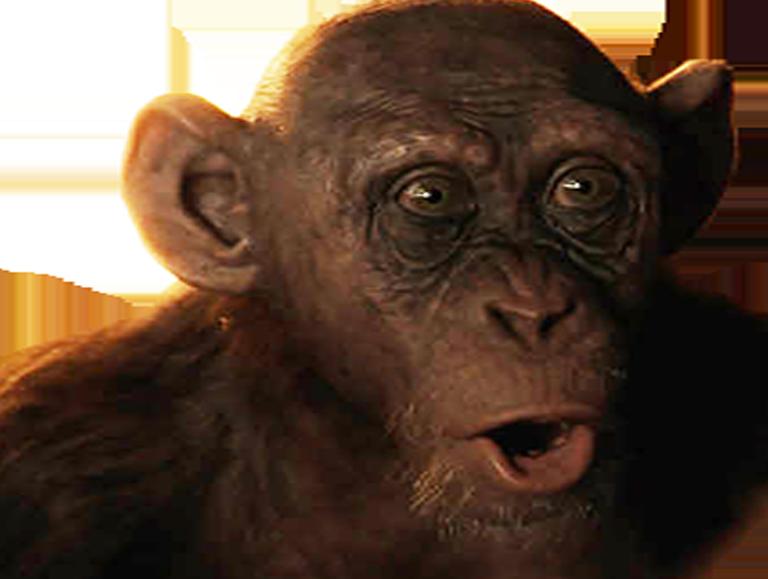 Sticker other singe la planete des singes bad ape