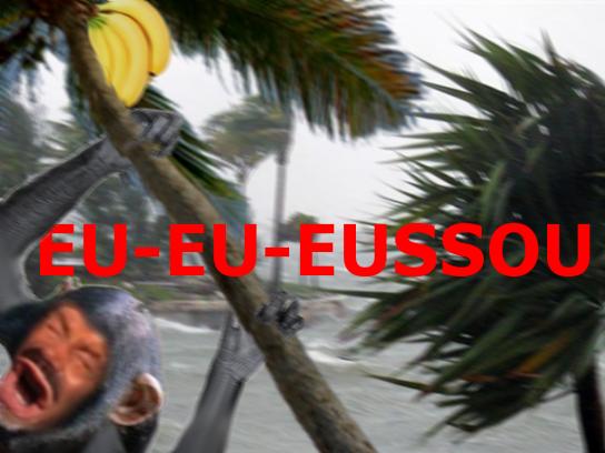 Sticker risitas risisinge banane eussou ouragan enerve envole