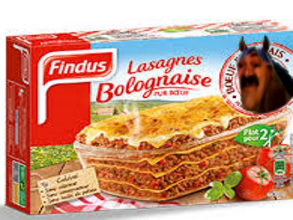Sticker cheval lasagnes findus risitas mix animal animaux