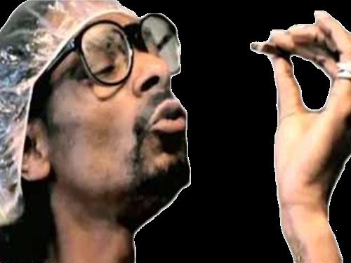 Sticker other snoop dog fumer weed smoke niggas dred cool