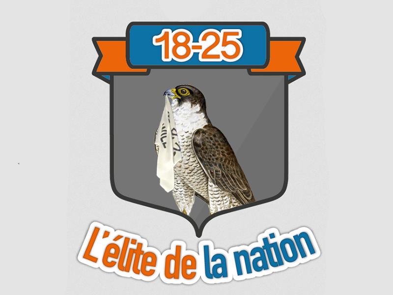 Sticker risitas 18 25 18 25 mascotte faucon aigle rapace blason armoiries shia laboeuf he will not divide us