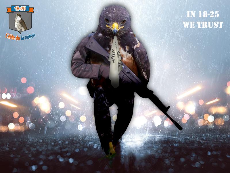 Sticker jvc risitas 18 25 18 25 mascotte faucon aigle rapace blason armoiries shia laboeuf he will not divide us
