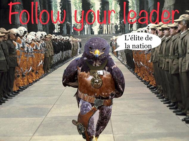 Sticker faucon follow your leader 18 25 elite de la nation star wars jvc