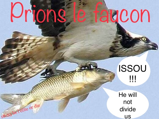 Sticker faucon prions be elite or die jvc 18 25
