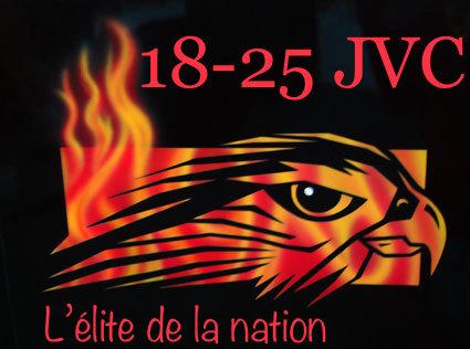 Sticker faucon elite de la nation 18 25 jvc drapeau etendard