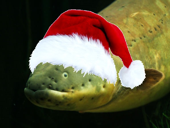 Sticker other poisson anguille noel riviere marais chapeau