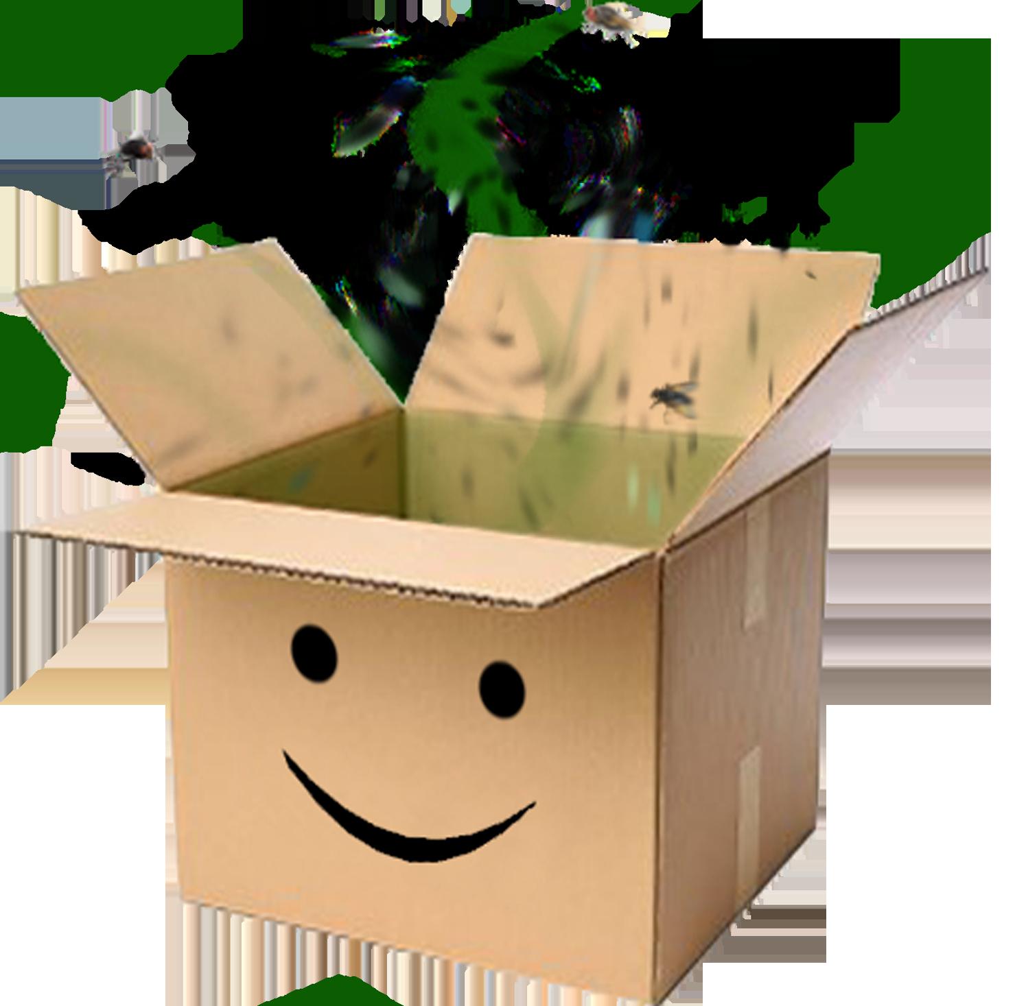 Sticker other carton odeur sourire content puant boite box affreux malade mouche sale cartonfag avenoel