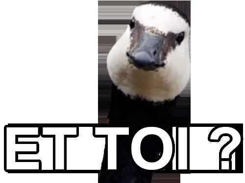 Sticker other oiseau deter et toi thug canard