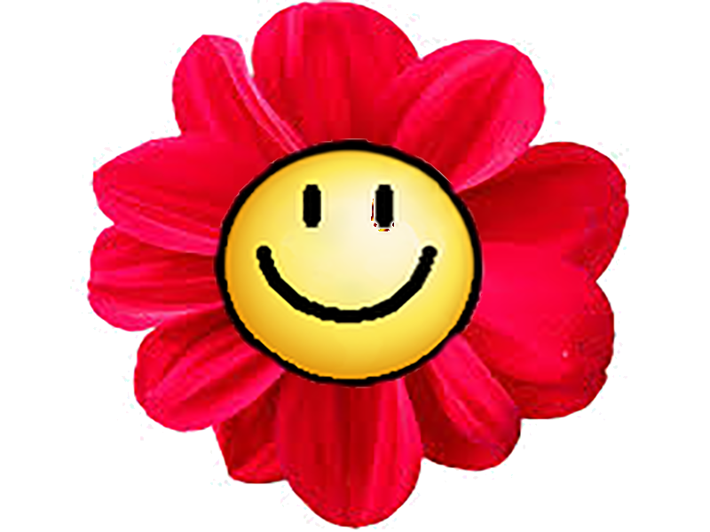 Sticker other smiley sourire impertinant fleur drole ridicule plante nature herbe couleur rose