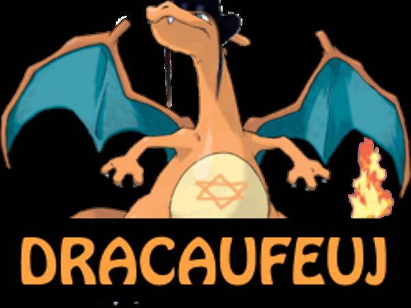 Sticker dracaufeuj pokemon dracaufeu other
