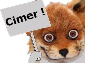 Sticker risitas renard fox merci cimer ryodelrio