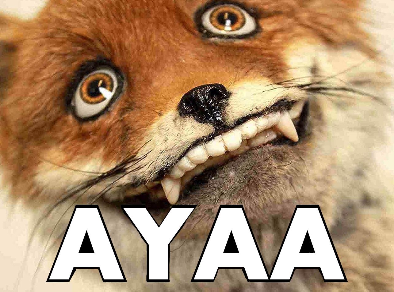 Sticker other renard fox ayaa