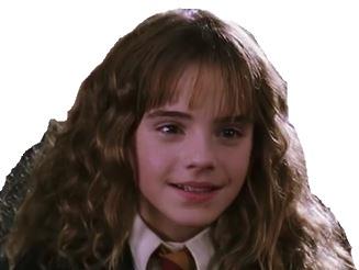 Sticker hermione fangirl lockhart harry potter hp2 sourire charmeur