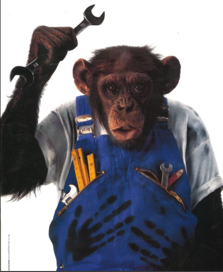 Sticker other singe macaque afrique mecanicien