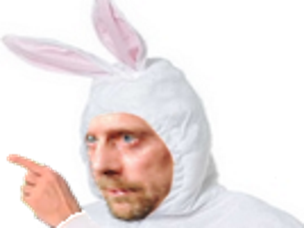 Sticker soral lapin costume deguise alain chauve other