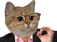 Sticker other chat lunette intellos scientifique jamy explication gros yeux roux orange precis main attention source zemmour discussion debat