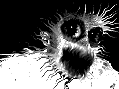 Sticker risitas jvc kannach abomination monstre difforme creepy omg