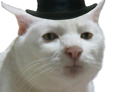 Sticker other chat blanc blase regard hd collector chapeau top hat