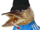 Sticker risitas guetteur poisson racaille wesh dealeur shit rue street queutard rue banlieu arabe