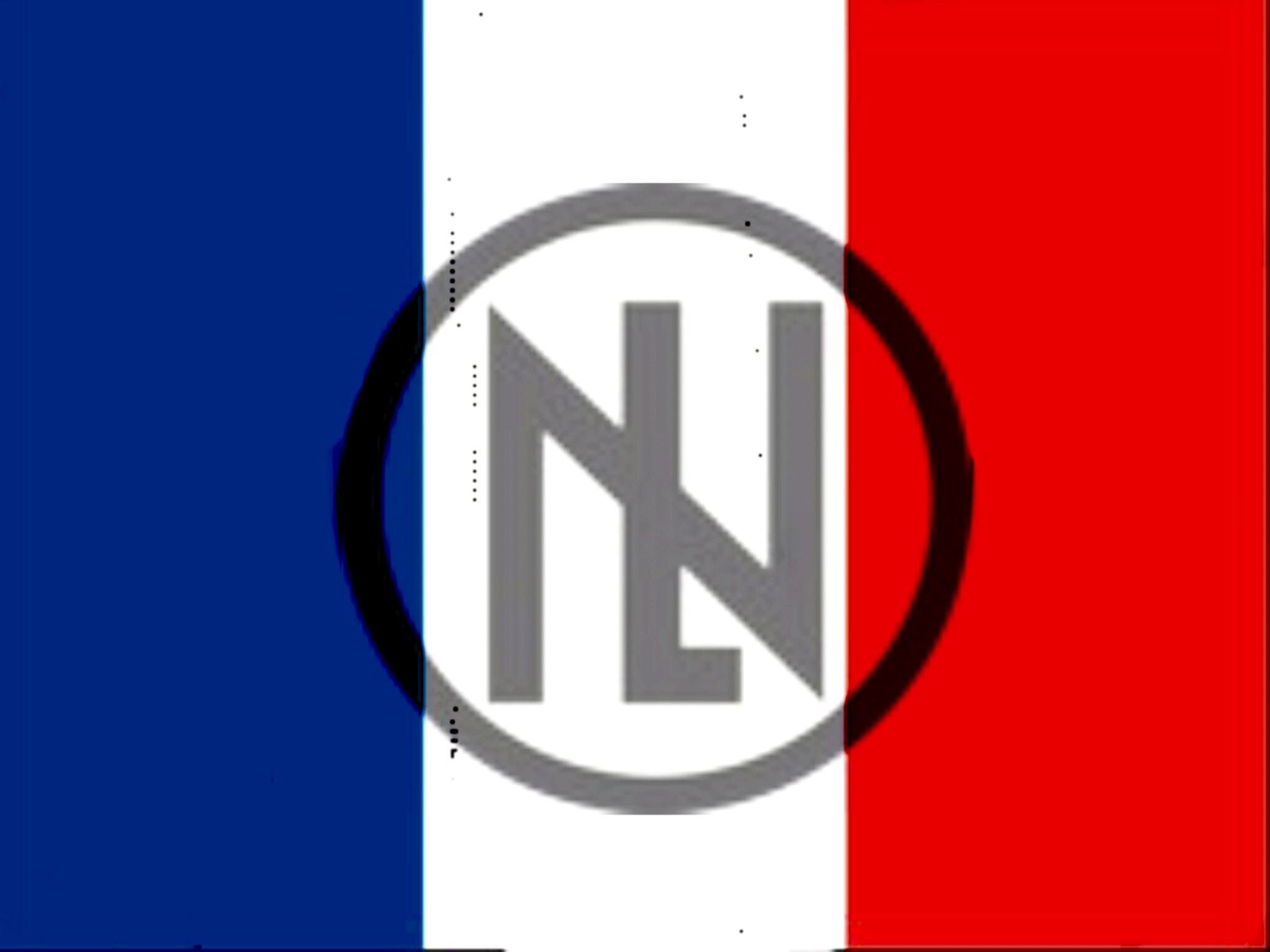 Sticker politic pnl de lesquen henry drapeau francais france parti national liberal natlib