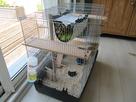 Aménagement pour la cage de mes deux monstres 1374232185-img-5303