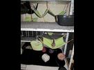 Photos de vos cages - Page 40 1393354577-img-9368