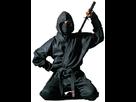 1395844091-ninja-jutsu.png