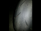 Avis usure pneu 1456268713-20160221-200558-copier