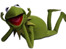 http://image.noelshack.com/fichiers/2016/47/1479931805-kermit-pose.png