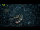 http://image.noelshack.com/minis/2017/40/3/1507131863-hellblade-senua-s-sacrifice-screenshot-2017-10-04-17-36-38-90.png