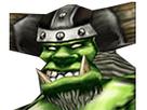 http://image.noelshack.com/fichiers/2018/21/3/1527035088-raider.png