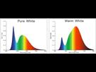 Guide pour le choix d'un éclairage LED 1561765996-warm-vs-cool-white-1