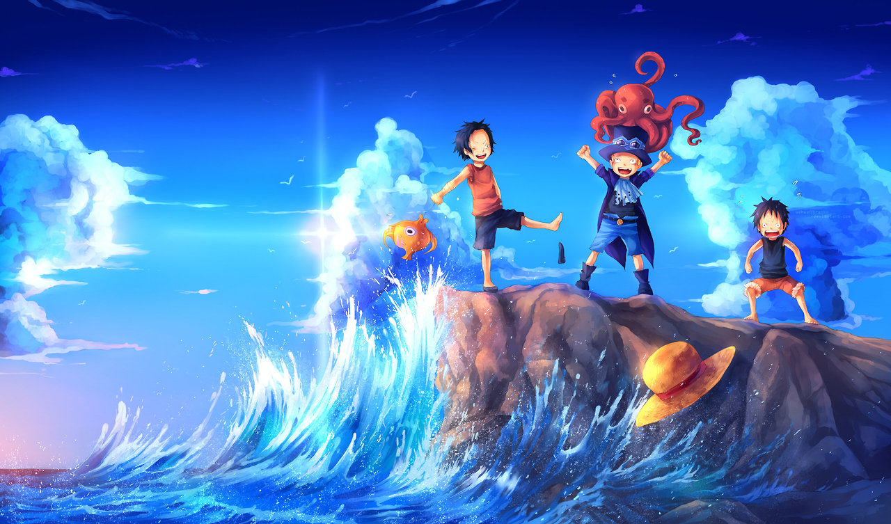 Vos Fonds D Ecran Sur Le Forum One Piece Pirate Warriors 3
