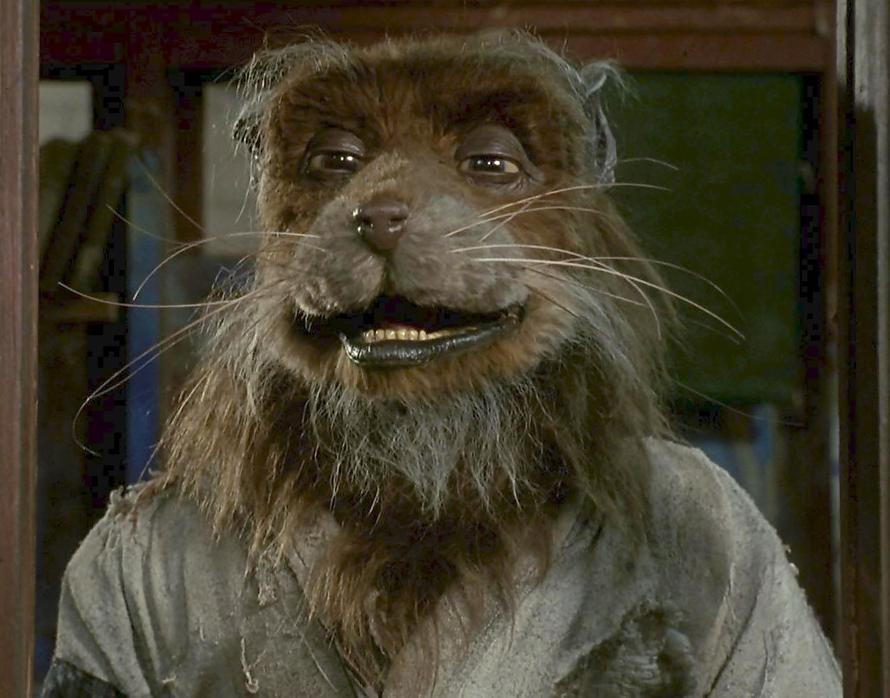 Profil de mgfragil - Maitre rat tortue ninja ...