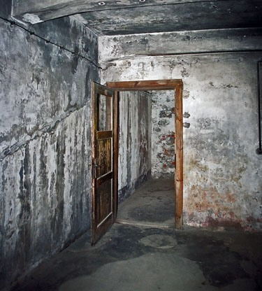 https://image.noelshack.com/fichiers/2018/27/6/1530969932-pologne-auschwitz-chambre-a-gaz-2.jpg