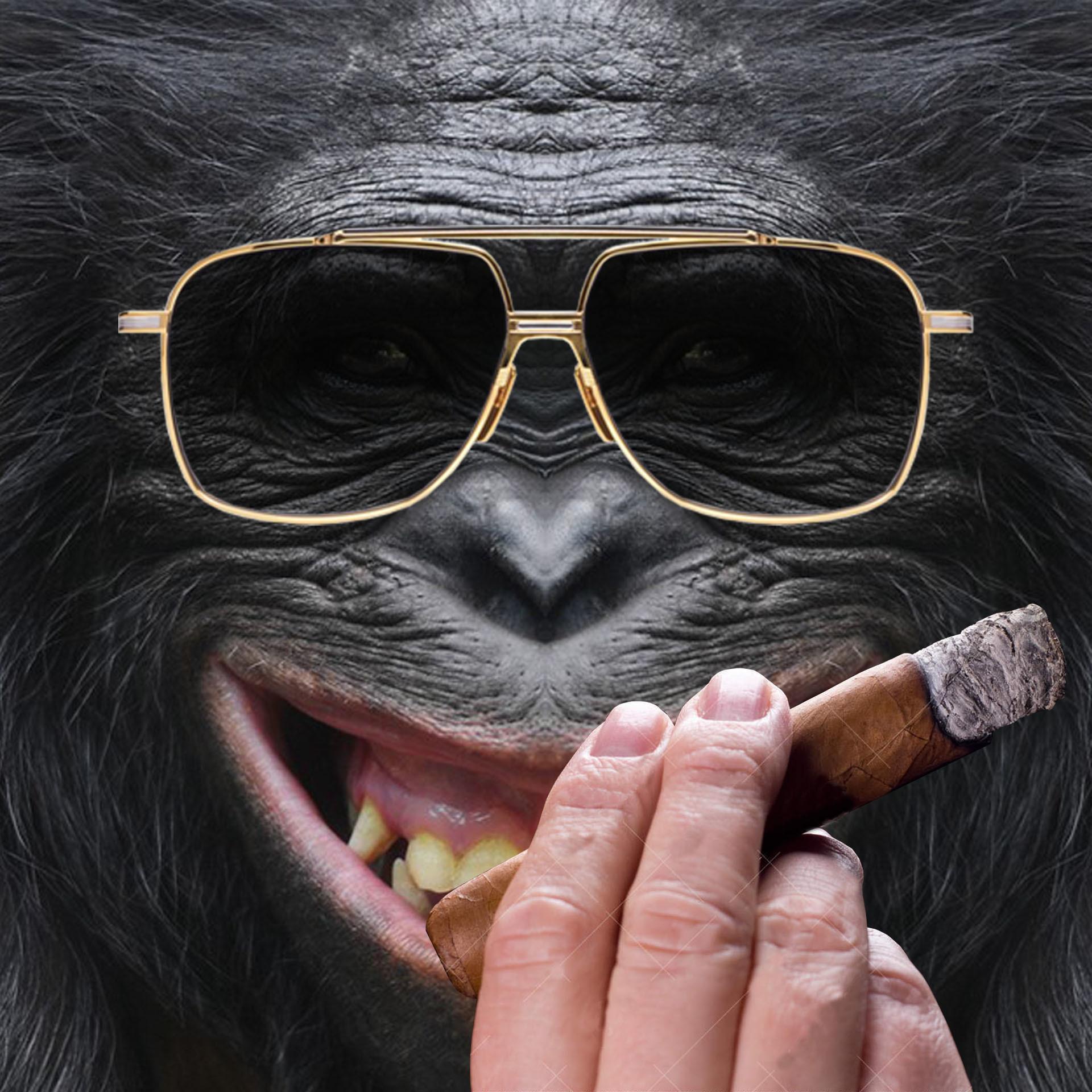 1617156743-monkey-rich-cigare.jpg