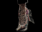 http://image.noelshack.com/fichiers/2012/16/1334587499-louboutin-stamp-429.gif