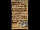 https://www.noelshack.com/2014-07-1392563689-vikings-par-bigrat-page-1.jpg