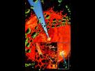 https://www.noelshack.com/2014-20-1400349902-1399074278-vole-planete-kryptonite.jpg
