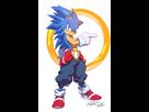 http://www.noelshack.com/2014-38-1411202681-sonic-the-hedgehog-character-full-1682479.jpg