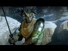 https://www.noelshack.com/2014-47-1416362739-dragonageinquisition-2014-11-19-03-00-52-33.png